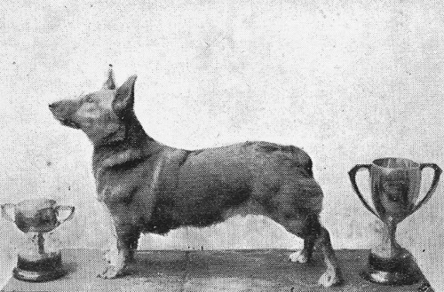corgi 1935